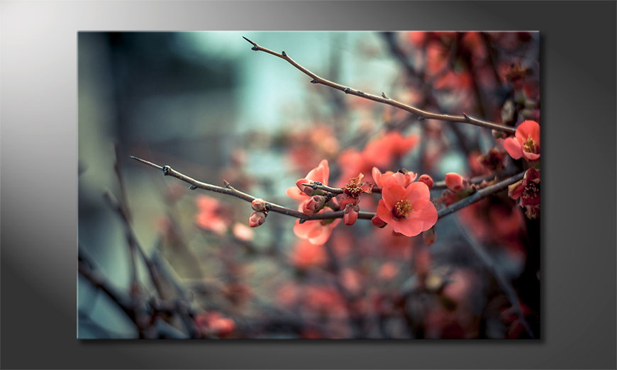 Le-tableau-mural-moderne-Red-Blossoms