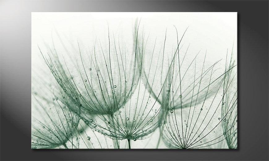 L'impression sur toile Dandelion Detail