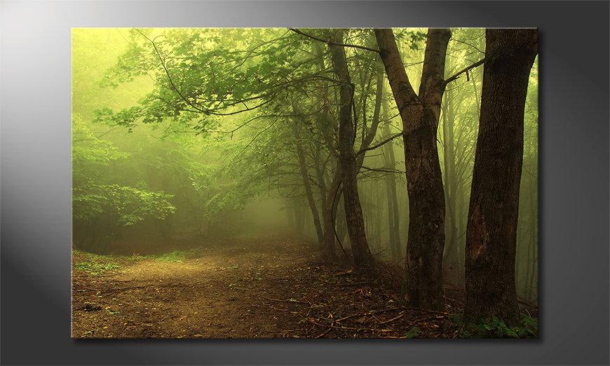 L'impression sur toile Green Forest
