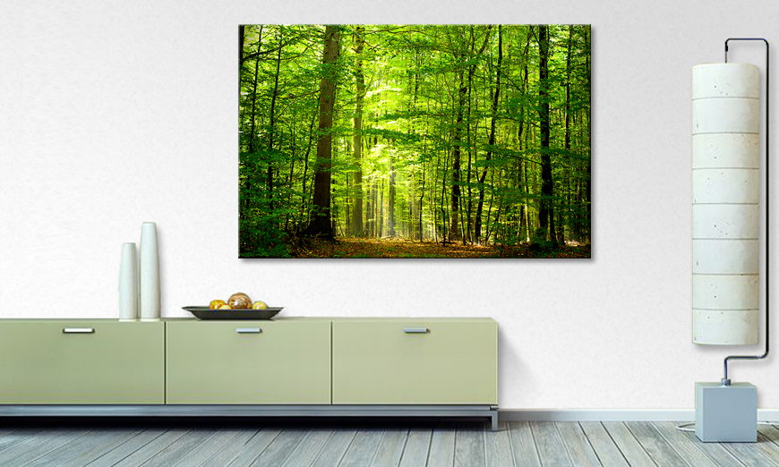 Limpression sur toile Into the Forest