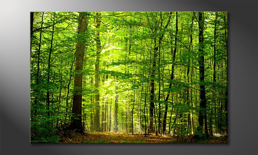L'impression sur toile Into the Forest
