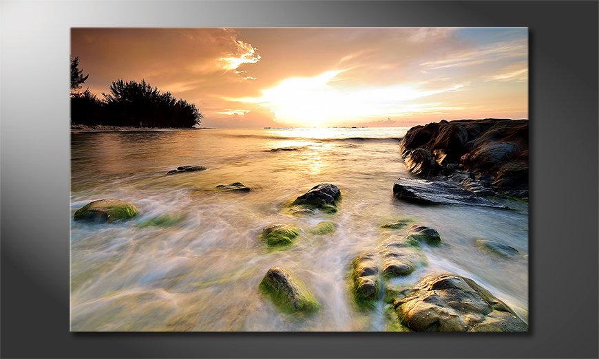 L'impression sur toile Stoned Sunset