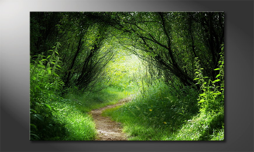 L'impression sur toile Way into the Forest